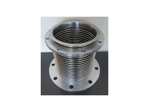 Expansion Joint SS304