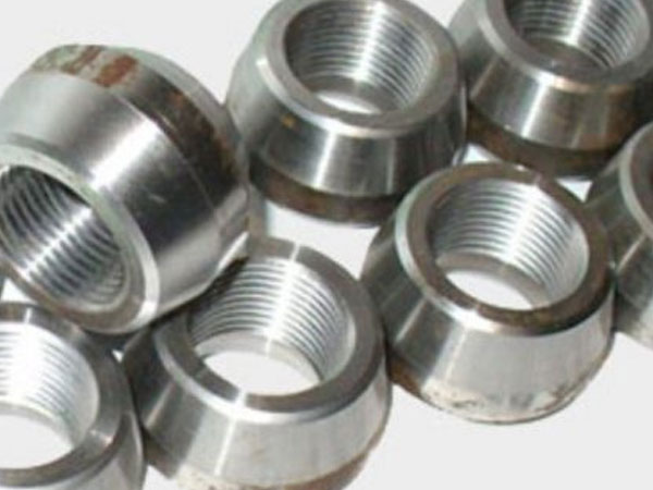 Fittings Threadolet SS316L