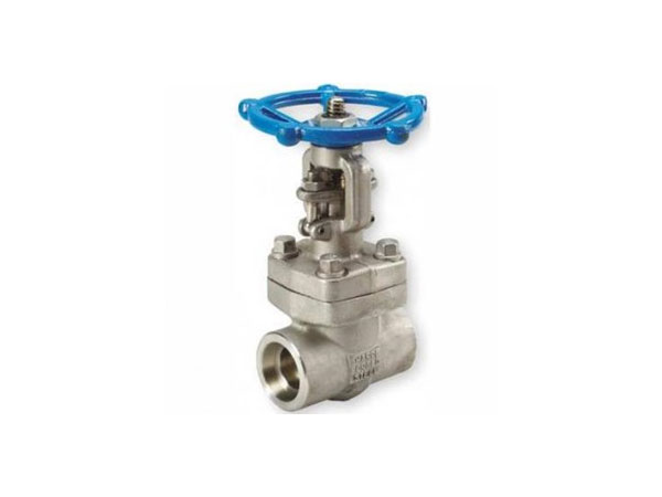 Globe Valve Stainless Steel A182 F316L
